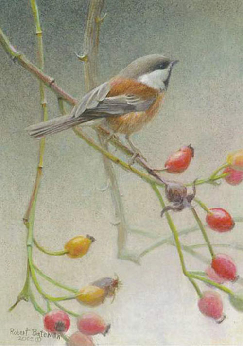 Robert Bateman Chickadee and Rose Hips