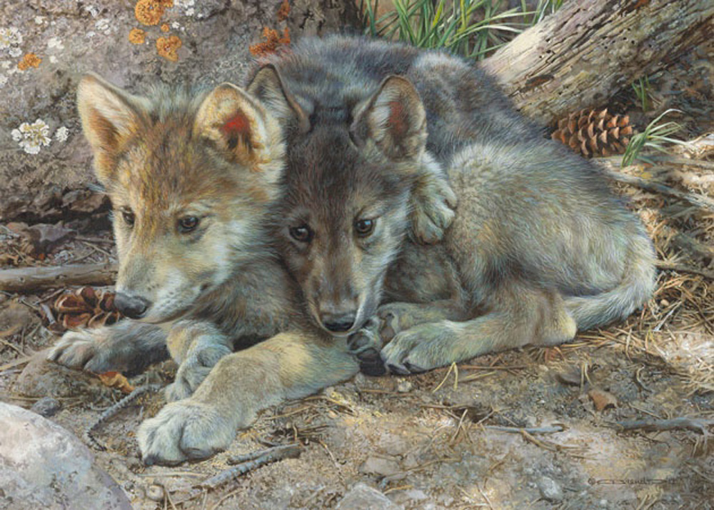 Carl Brenders Brotherly Love Wolf Pups