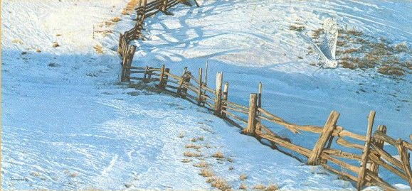 Brent Townsend - Split Rail