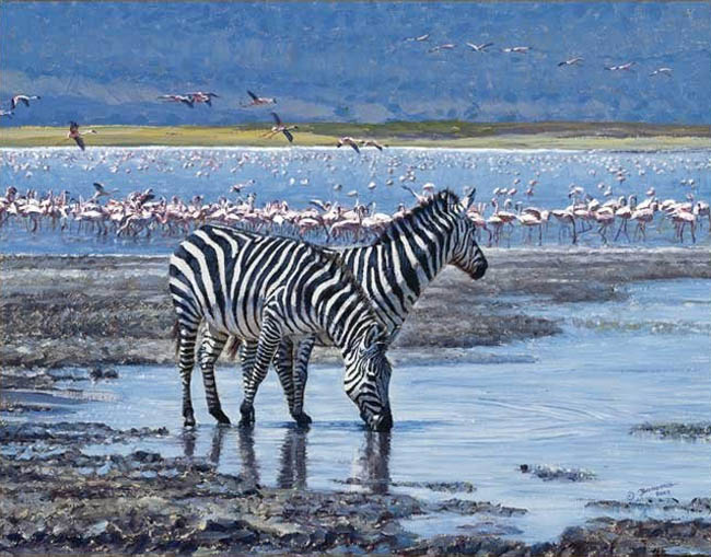 John Banovich Jewel Of The Crater Zebras