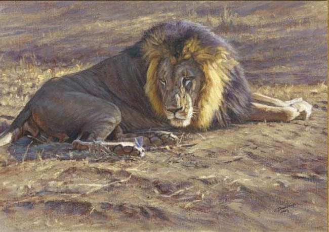 John Banovich The Visit Lion