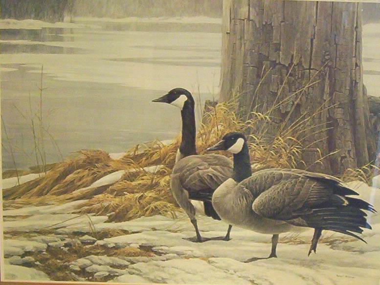 Robert Bateman Canada Geese IN Winter