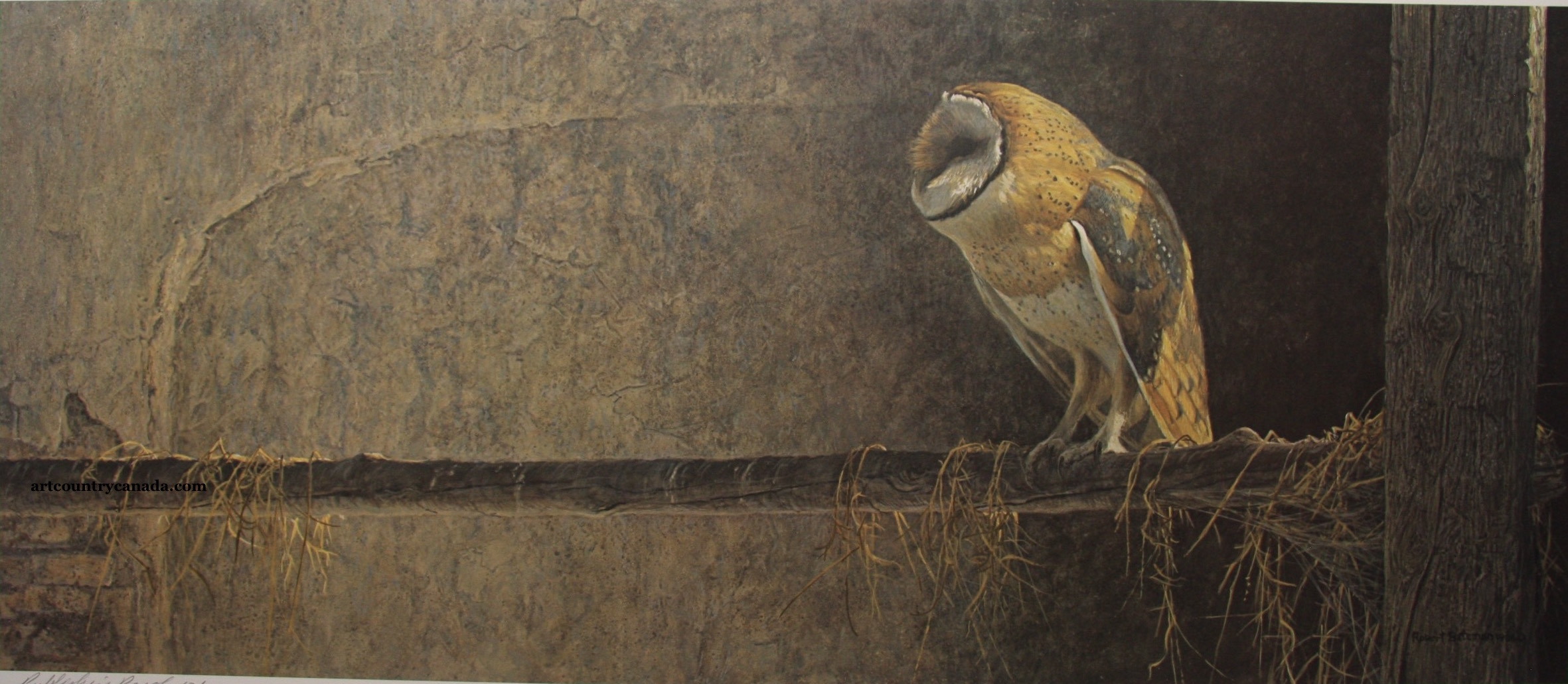 Robert Bateman Catching The Light Barn Owl