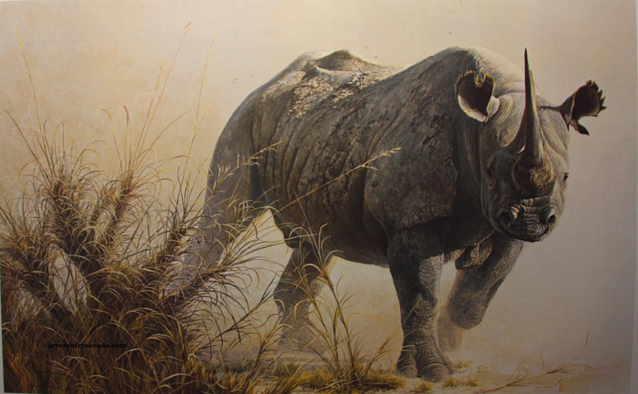 Robert bateman Charging Rhino