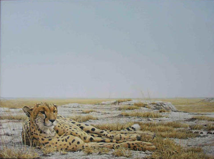 Robert Bateman Cheetah Siesta