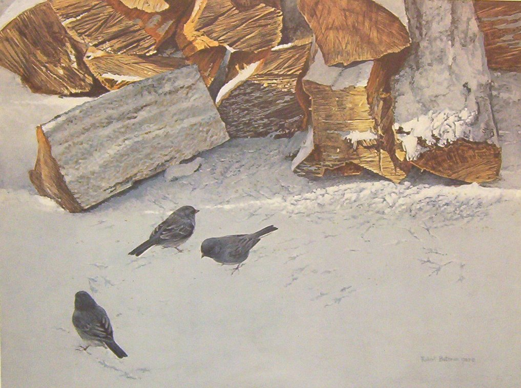 Robert Bateman Cherrywood With Juncos