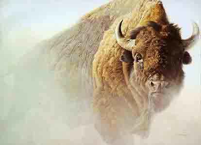Robert bateman Chief American Bison