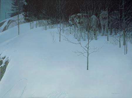 Robert Bateman Clear Night Wolves