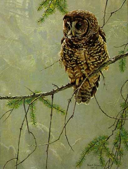 Robert bateman Continuing Generations 1