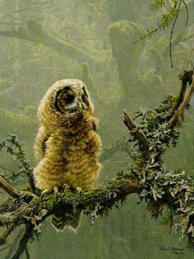 Robert Bateman Continuing Generations 2