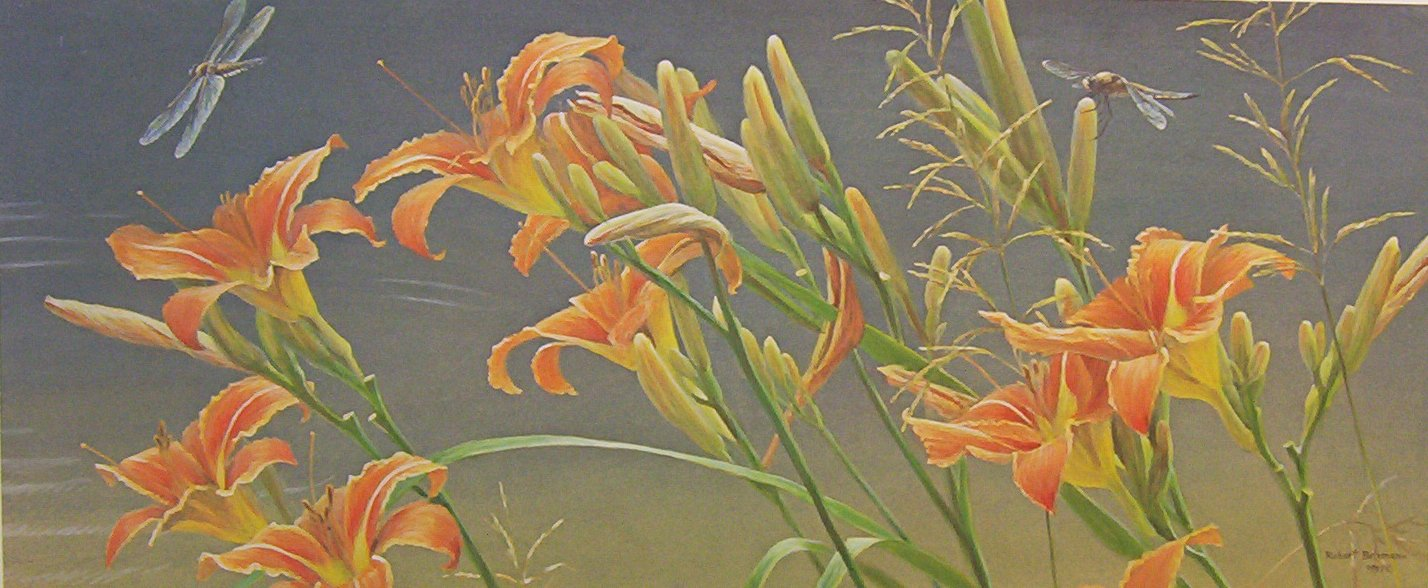 Robert Bateman Daylilies and Dragofly