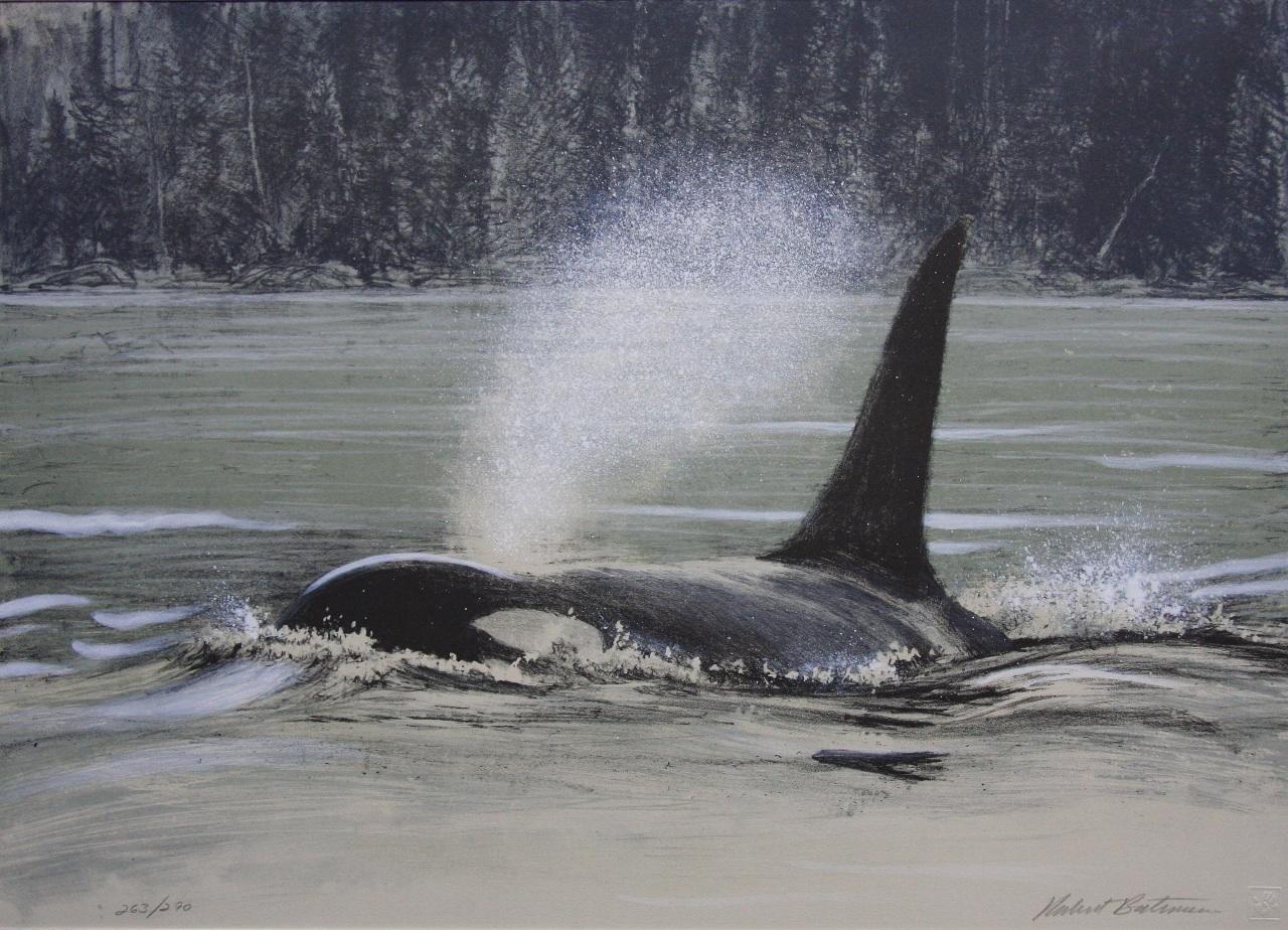... watercolor orca tribal art inuit orca art native orca art orca clip