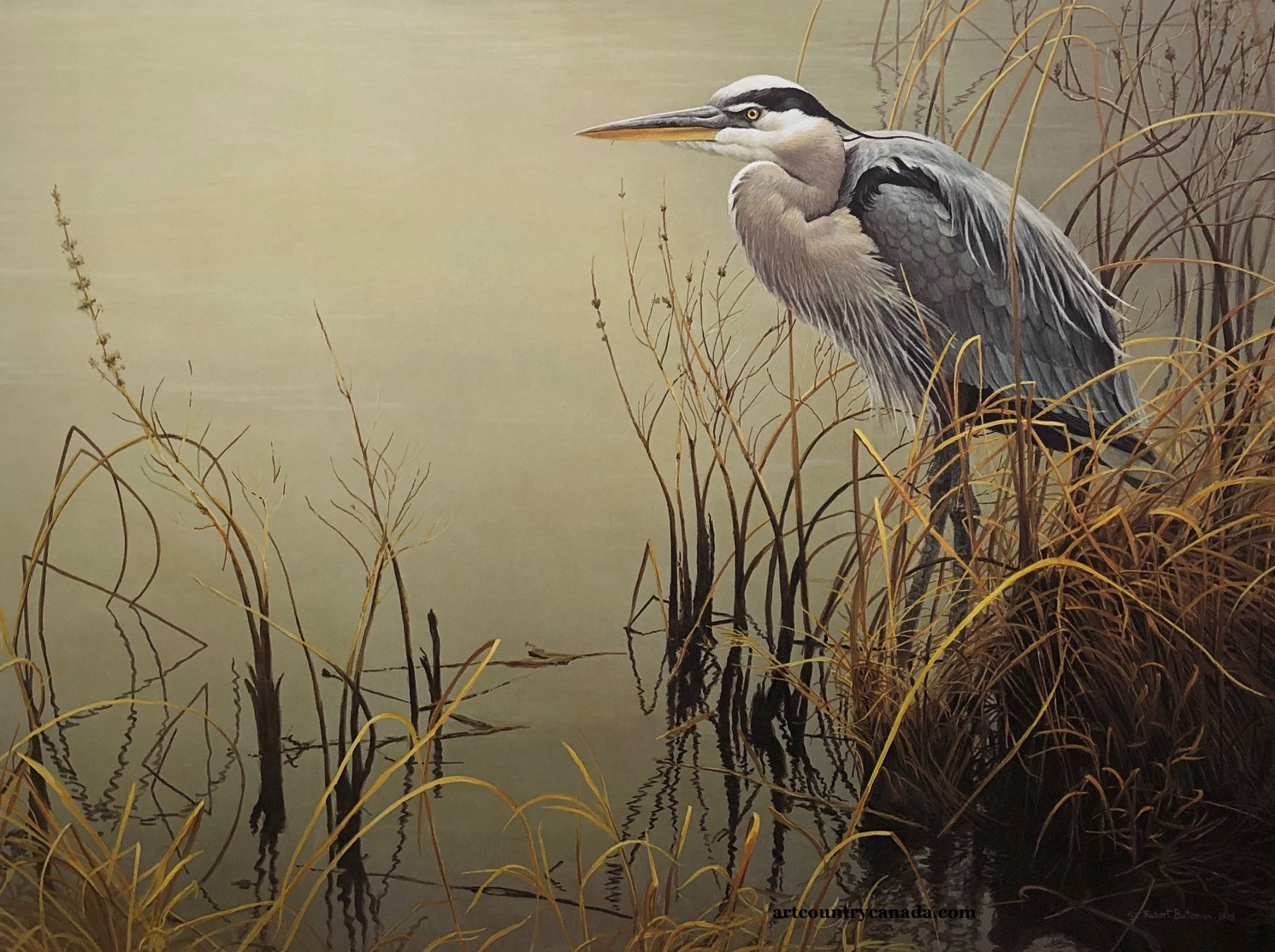 Robert Bateman Great Blue Heron