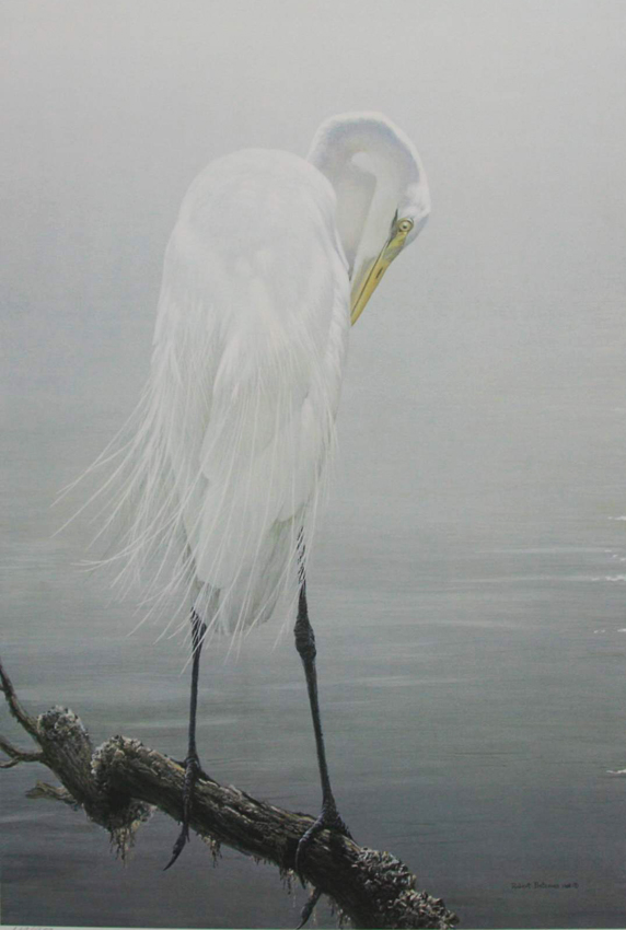 Robert Bateman Great Egret Preening