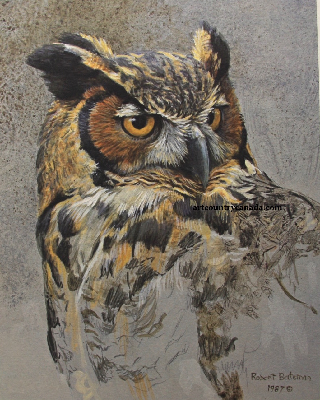 Robert Bateman Great Horned Owl Study