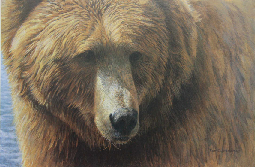 Robert bateman Grizzly Head Portrait