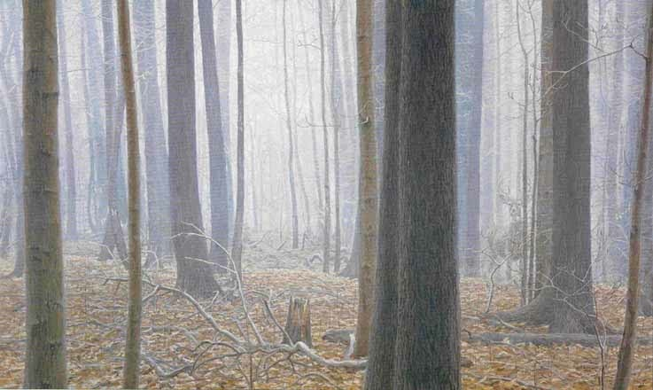 Robert Bateman Hardwood Forest White Tailed Deer