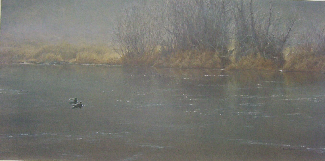 Robert Bateman High Water Mallards