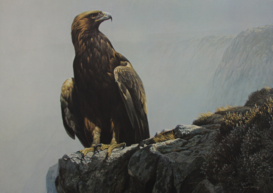 Robert Bateman In The Highlands Golden Eagle