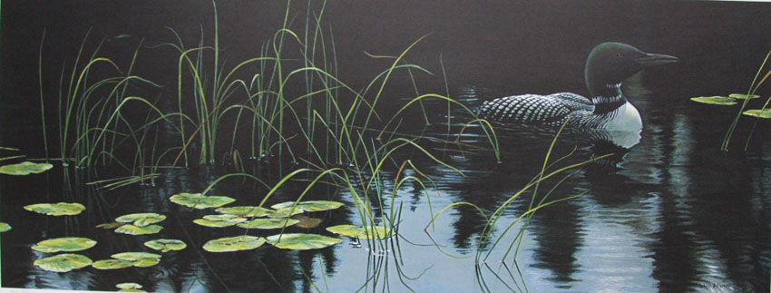 Robert Bateman Lily Pads and Loon