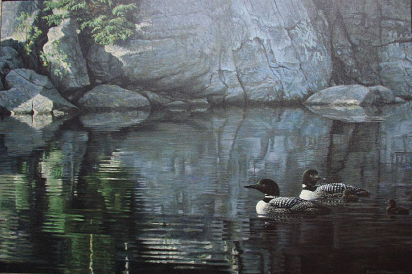Robert Bateman Northern Reflections Loon Family