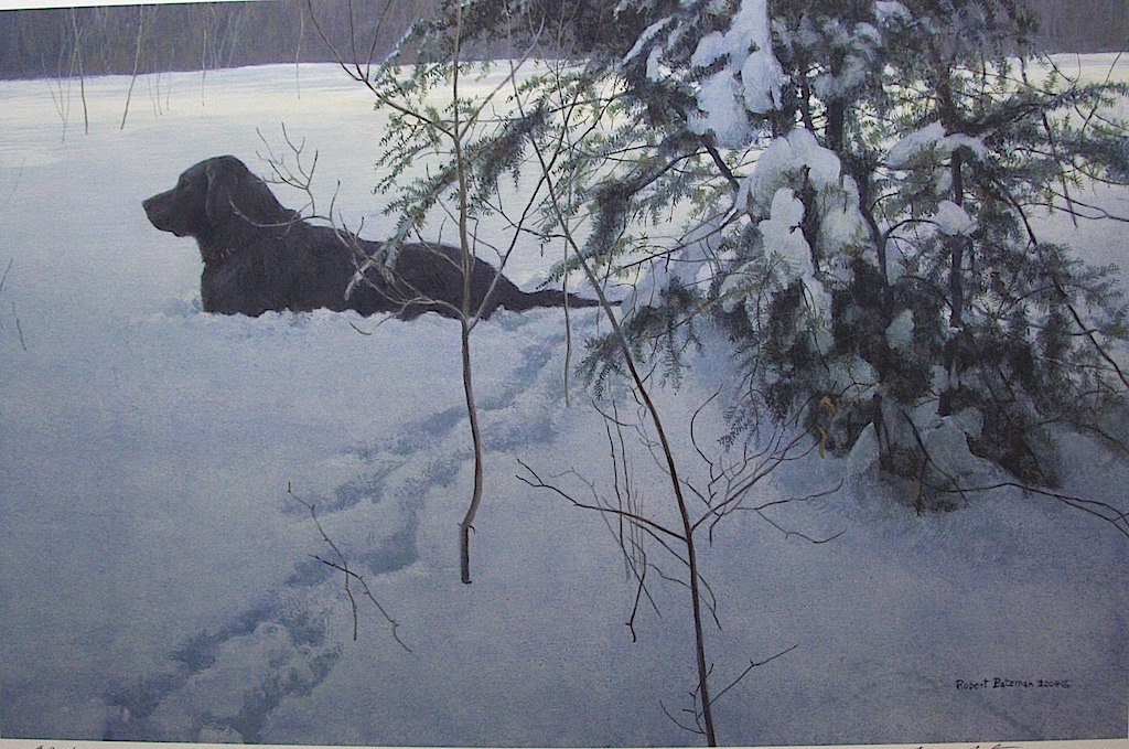 Robert Bateman Off The Leash Black Labrador