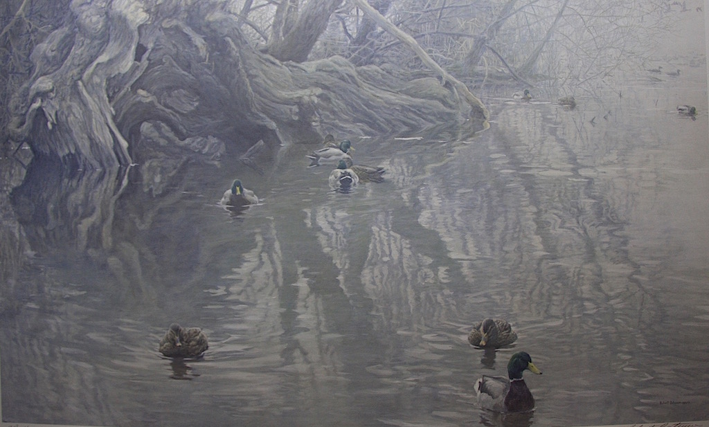 Robert Bateman Old Willow and Mallards