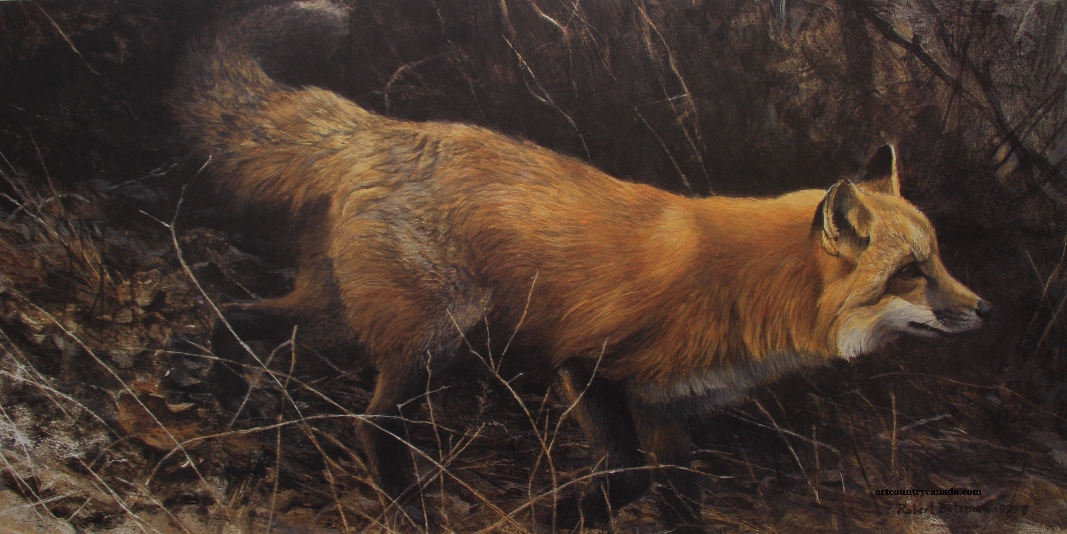 Robert bateman On The Move Red Fox