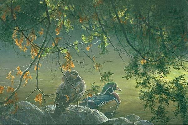 Robert Bateman On The Pond Wood Ducks