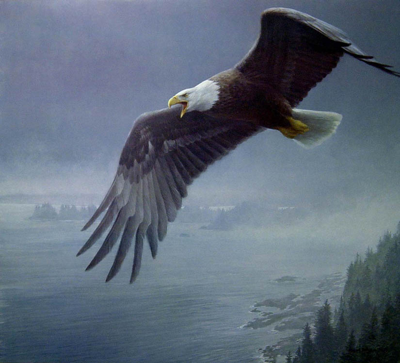 art country canada robert bateman world 39 s most complete