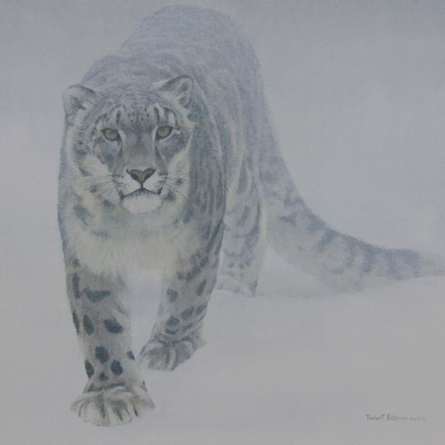 Robert Bateman Out of the White Snow Leopard