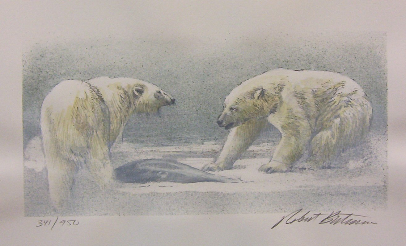 Robert Bateman Polar Bear