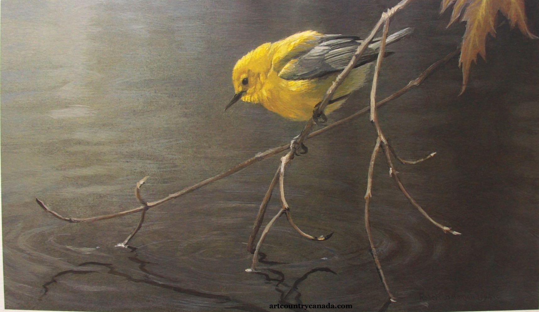 CLICK HERE OR IMAGE TO RETURN THE Robert Bateman P PAGE