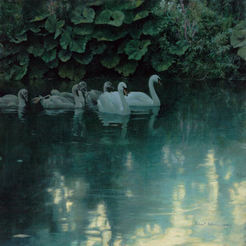 Robert Bateman Great Dunford Mute Swans