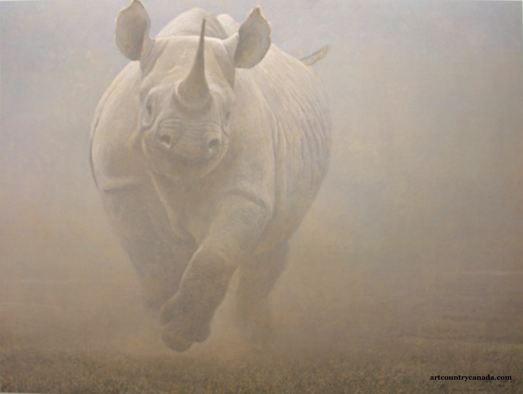 Robert Bateman Powerplay Rhinoceras