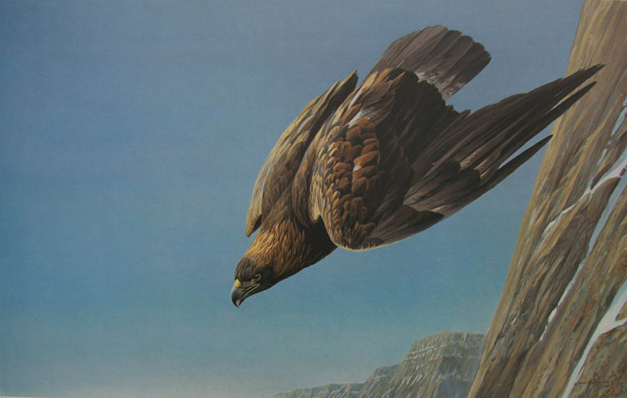 Robert Bateman Golden Eagle Limited Edition Print