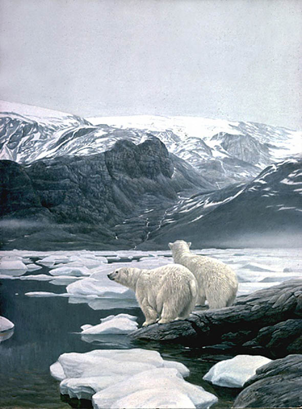 Robert Bateman Polar Beras at Baffin Island