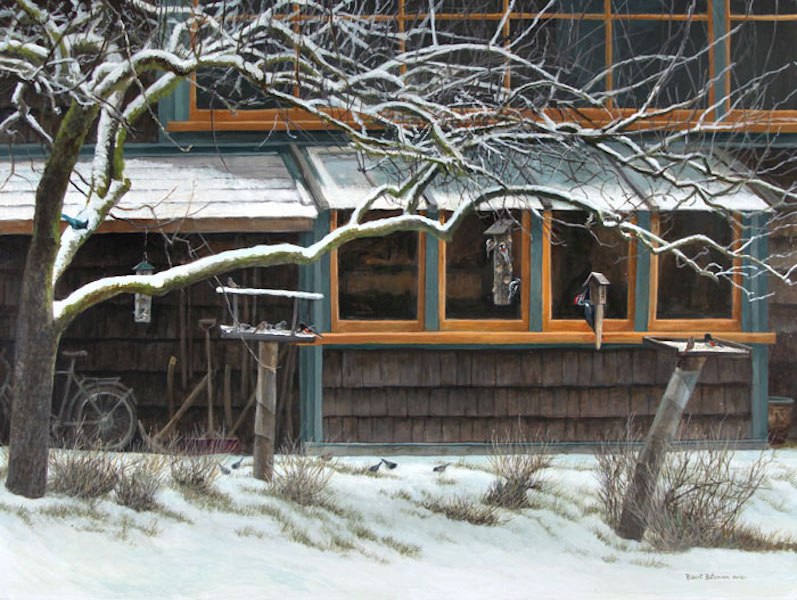 Robert Bateman Studio Windows