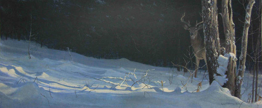 Robert bateman Whitetail in Winter