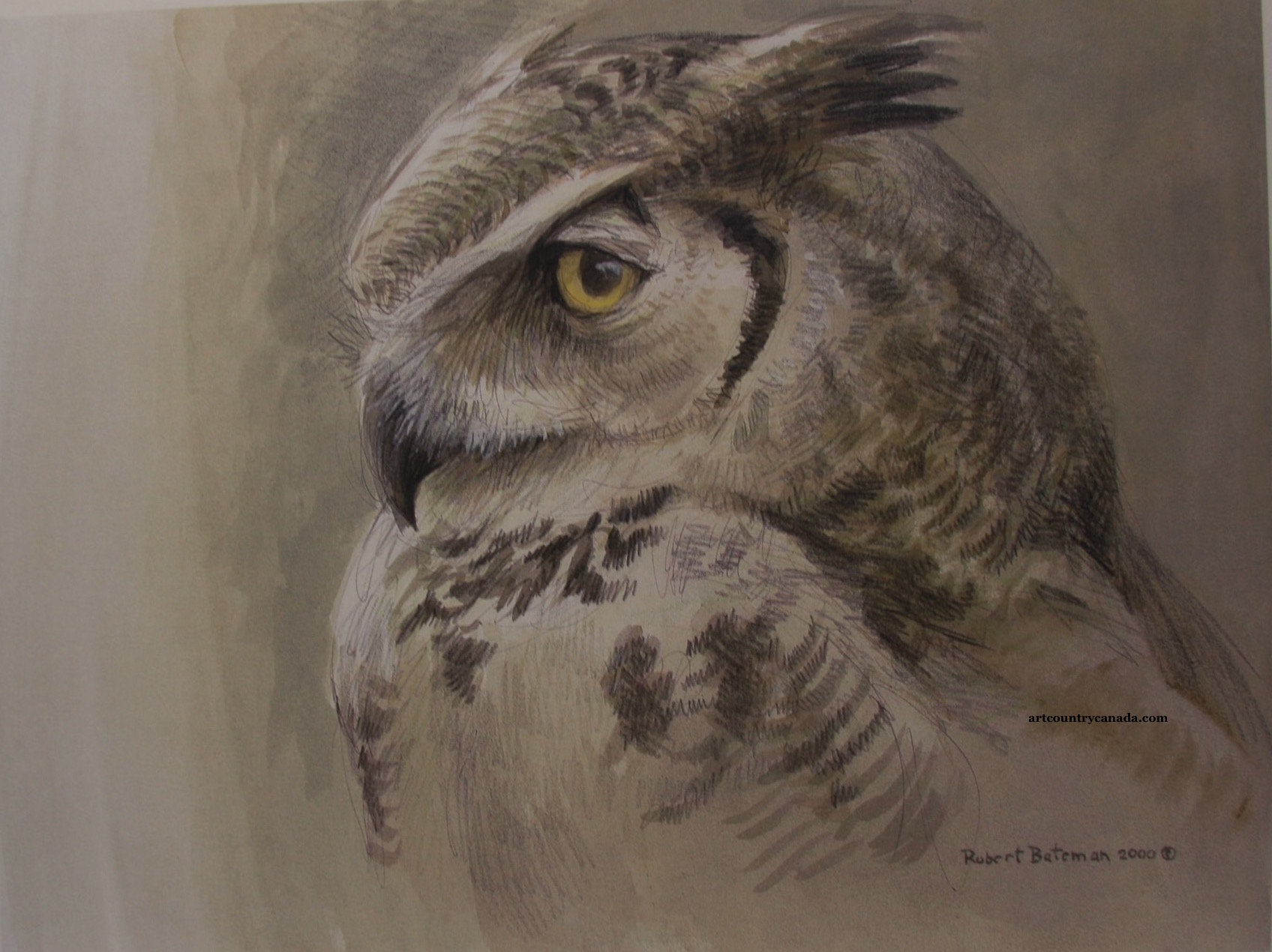 Robert Bateman Samantha Great Horned Owl