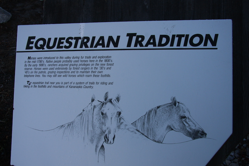 Bragg Creek Horse Sign