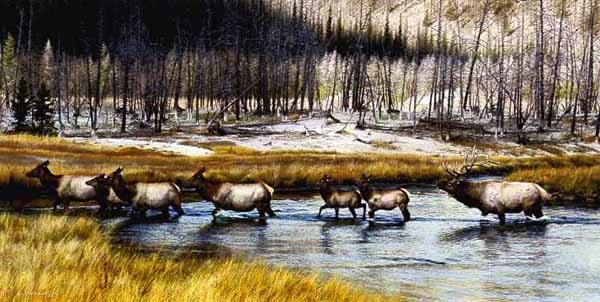 Carl Brenders Autumn procession Elk