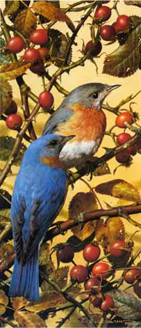 Carl Brenders Bluebirds