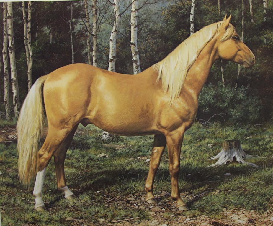 Art Country Canada - CARL BRENDERS Blonde Beauty Horse