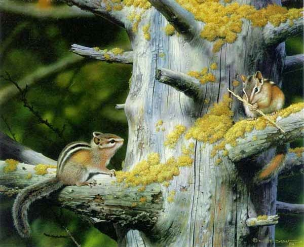 Carl Brenders Playful Pair Chipmonks