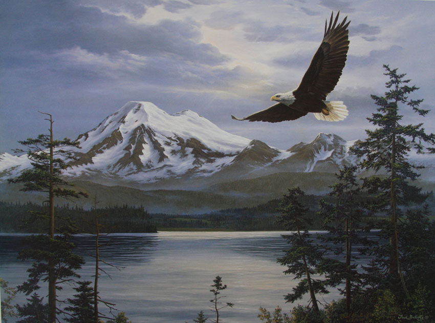 Fred Buchwitz Majestic Flight Bald Eagle