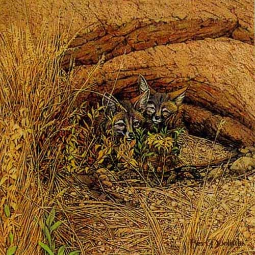 Bev Doolittle Fox Haven