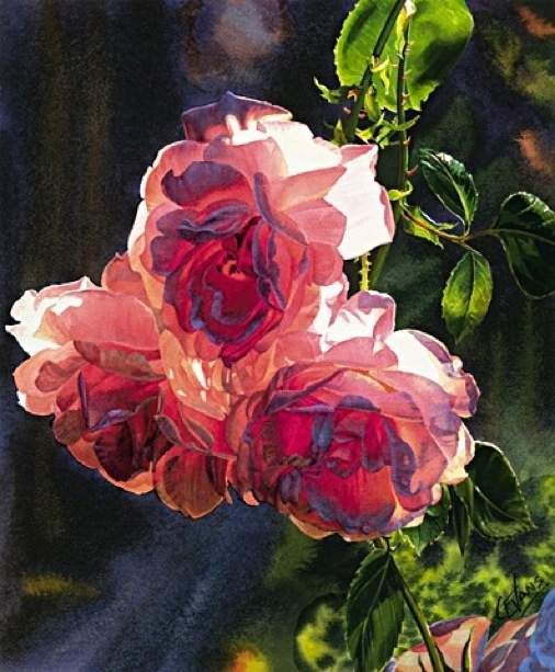 Carol Evans Roses In The Morning