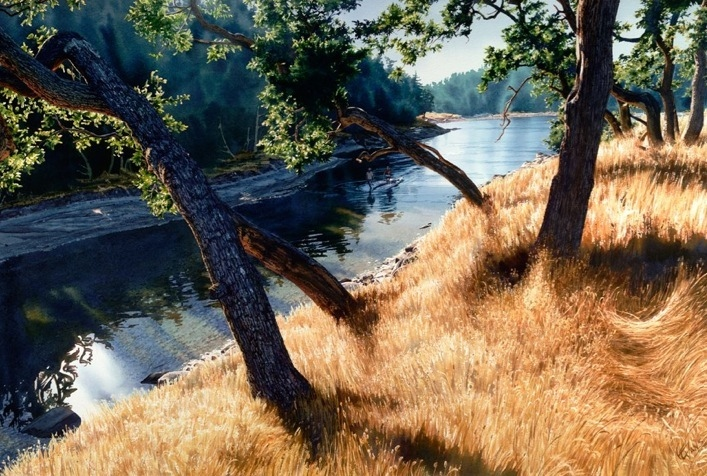 Art Country Canada Carol Evans Oak Grove Giclee On