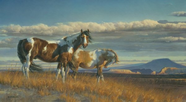 Nancy Glazier Painted Desert